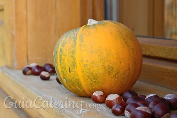 Platos de cuchara para el otoño